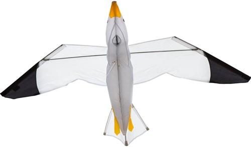 HQ Seagull 3D