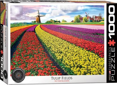 Eurographics puzzle Tulpenfelder - 1000 Teile