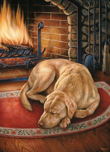 Cobble Hill puzzle 1000 pieces - Home is where the Dog is.